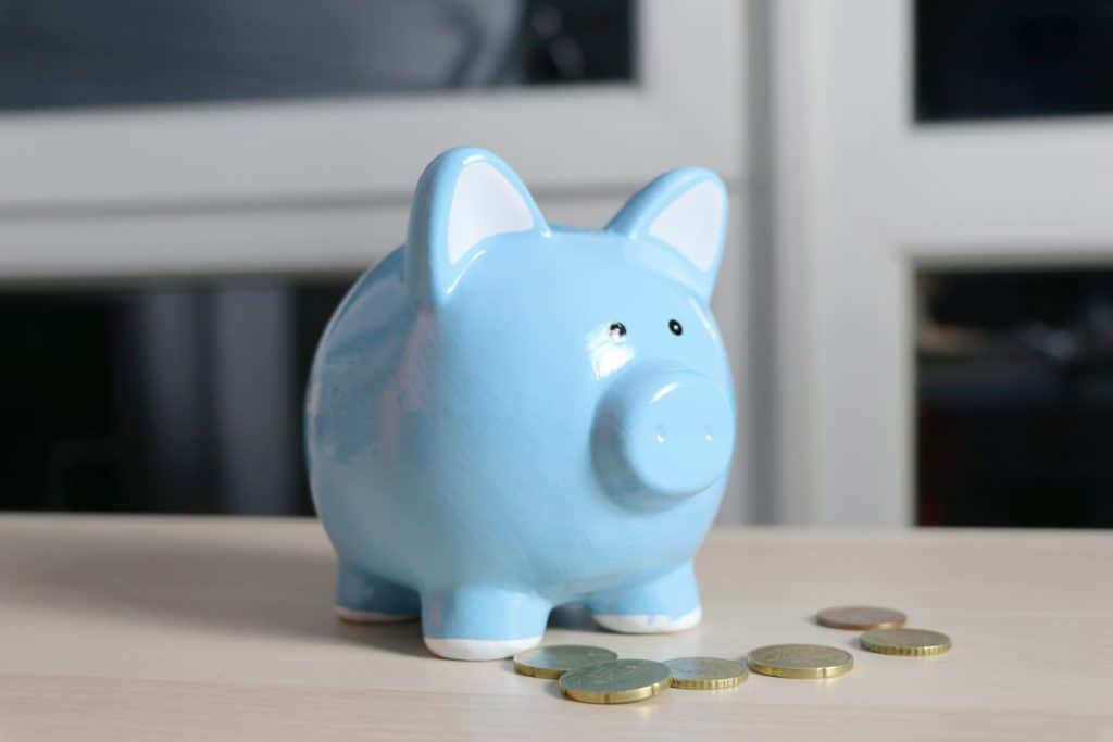 Learn how to budget with these Nifty Tips - piggy bank
